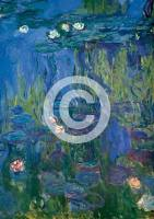 MONET,CLAUDE, NympheasBreite: 21...